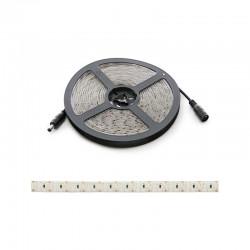 Tira LED 204Xm SMD3014 12Wm 12VDC IP65 x 5M
