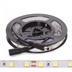 Tira LED SMD5054 12VDC 10Mm X 5M 60Xm 1380Lm/M IP20